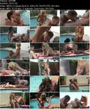 Wet, Hot And Hung (2009) - TS Foxy Angel